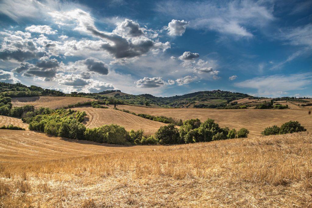 central valley overlook
