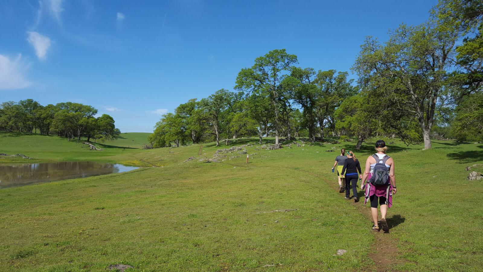 people hiking in meadow